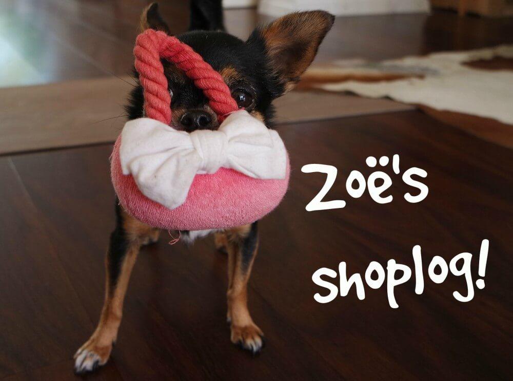 Shoplog hond, chihuahua zoe