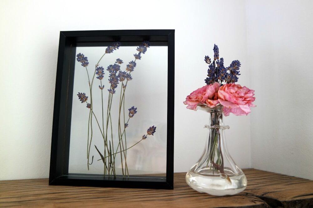 Lavendel in fotolijst
