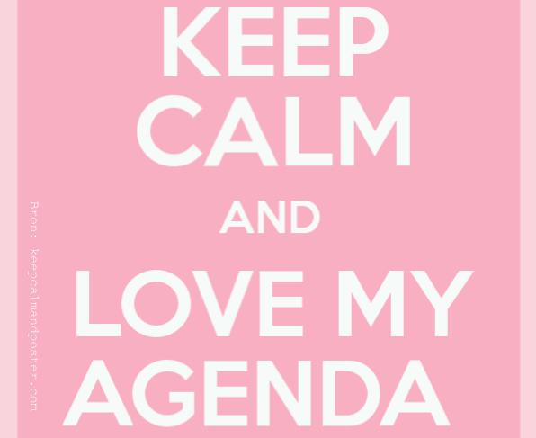 Een 'papieren' agenda, elk jaar weer op mijn wishlist