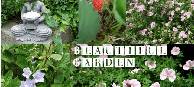 Kletspraatje, inbraak en genieten van bloemen | Maandag Collagedag