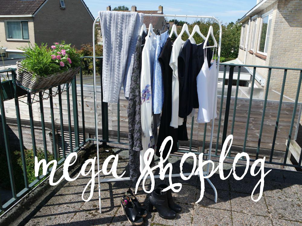 Een droom die uitkomt & Mega Shoplog