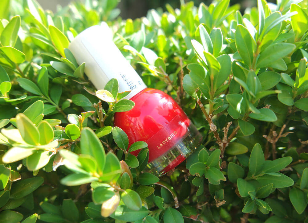 Review H&M Nagellak 2015 Ladybird