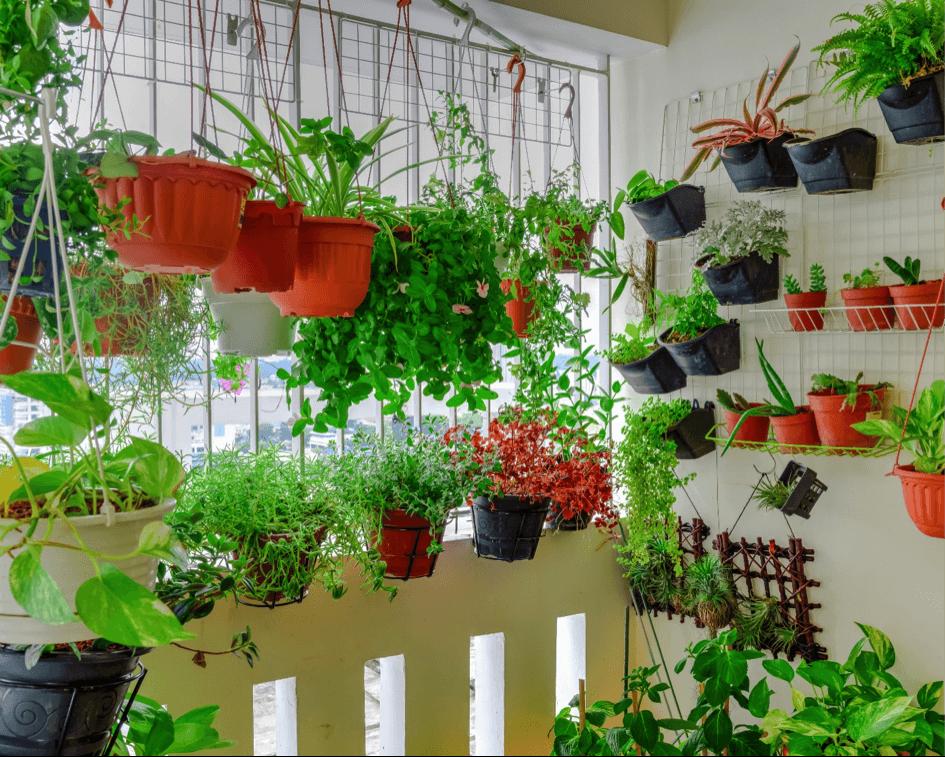 Maak je eigen binnentuin