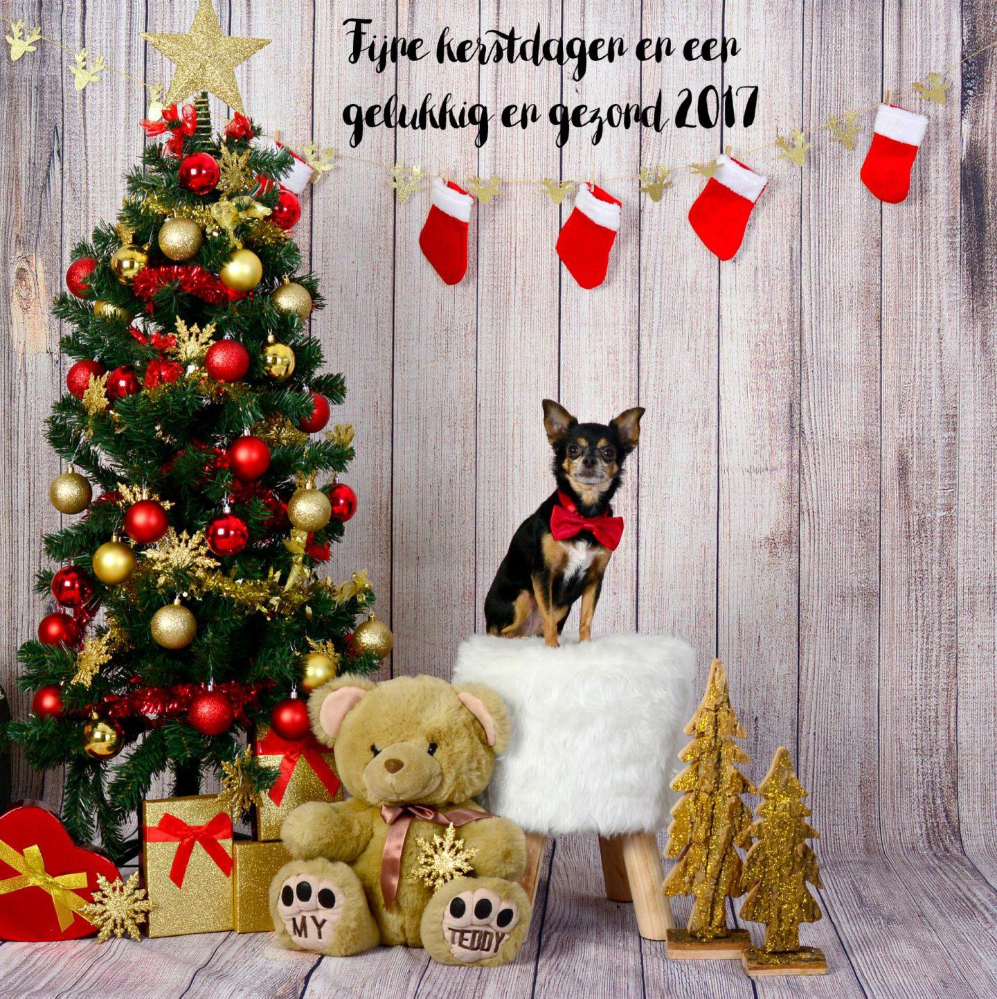 Kaart Zoe kerst